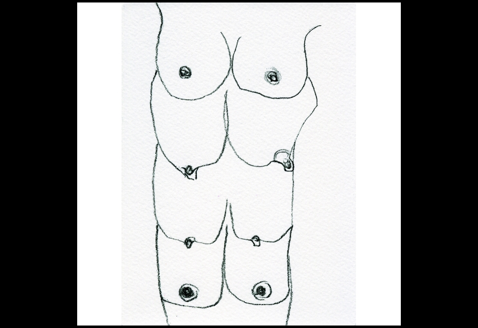Carol Rama, Cadeau (C.10), 1999