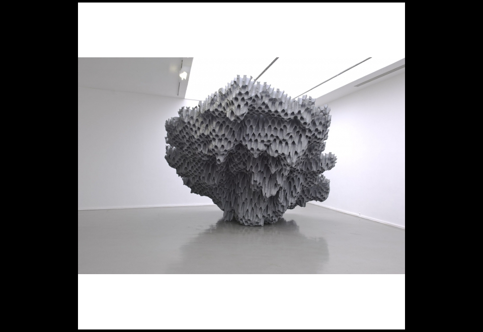 Vincent Mauger, Sans titre, 2010