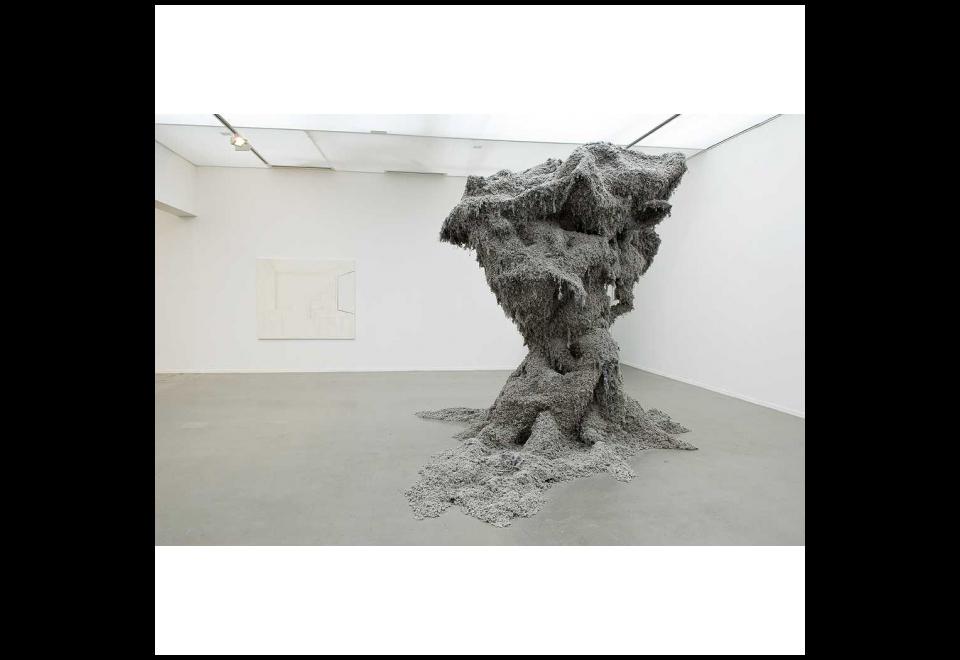 Yuhsin U.Chang, Poussière dans le musée d'Art moderne, 2010