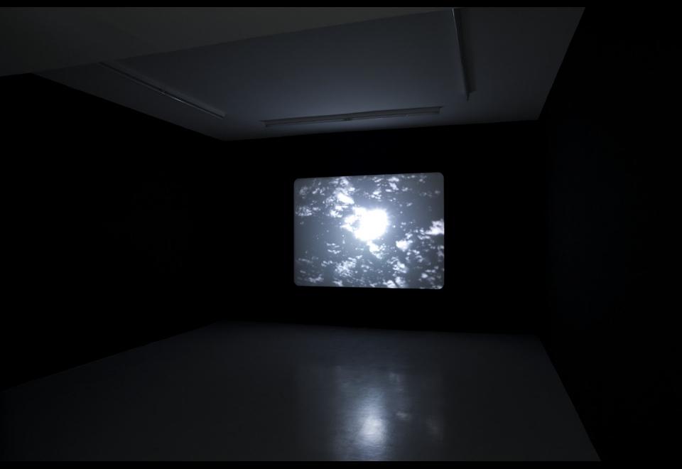 Screen-O-Scope (2010), Philippe Decrauzat